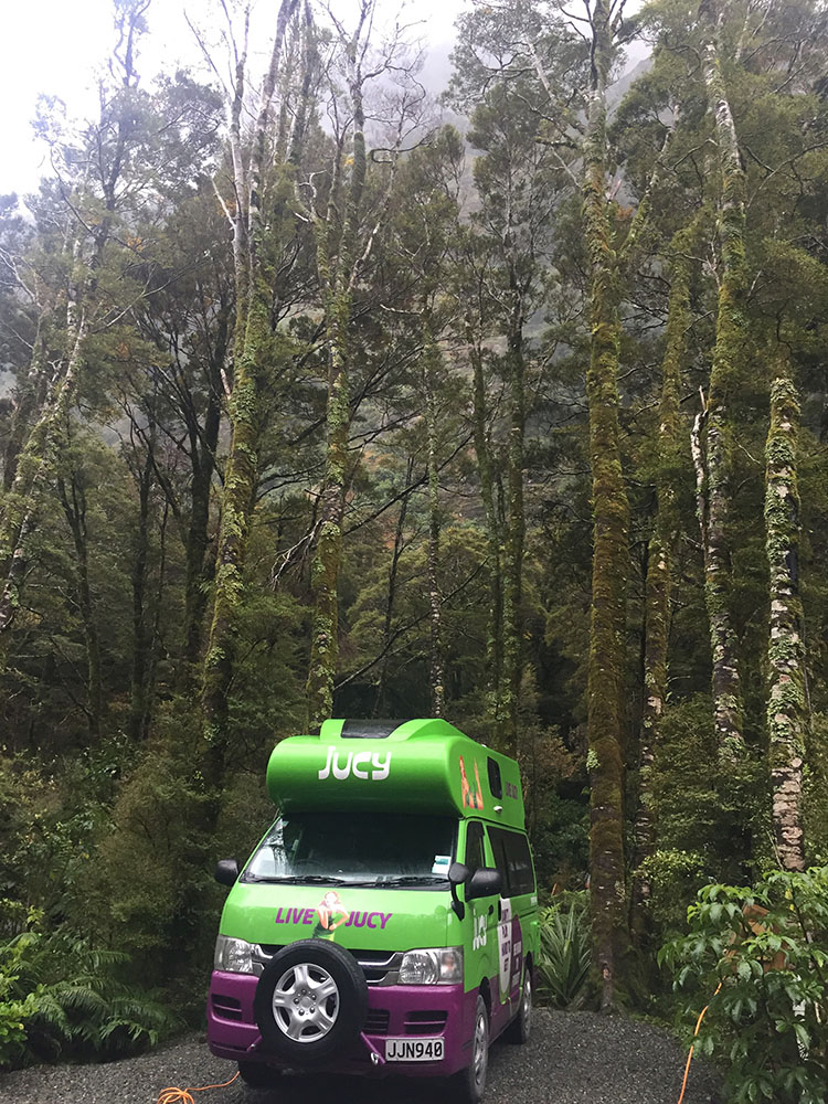 Camping Milford Sound