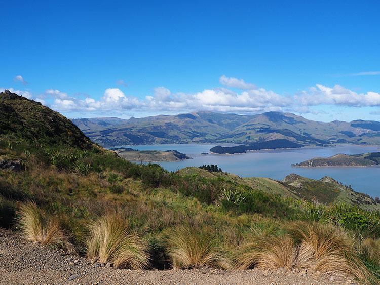Hauteurs de Christchurch